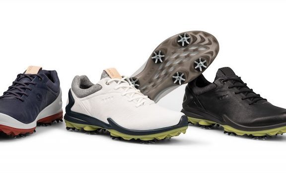 News Round Up January 11 2019 - ECCO Natural Motion Technology Release